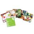 Snapshots™ Critical Thinking Photo Cards: Gr. PreK-K