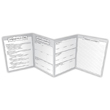 Opinion Piece Writing Organizer Fold Outs: Grades 4-5