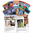 TIME FOR KIDS® Nonfiction Readers - Early Fluent Set 2 10-Book Set