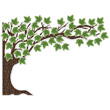 Woodland Whimsy Big Tree Bulletin Board Set
