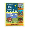 Explore Life Cycles! 25 Projects, Activities, Experiments