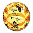Clever Catch® Elementary Science Insects