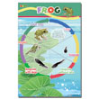 Frog Life Cycle Magnetic Wall Sticker