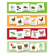Magnetic Whiteboard Graphics: Life Cycles - Set of 4