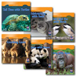 Animal Math - Set of 6