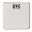 Personal Scale - 300 lb